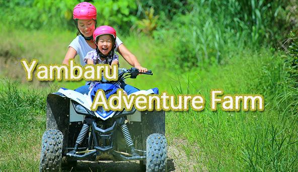Yanbaru Adventure