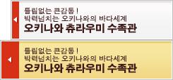 오키나와 츄라우미 수족관