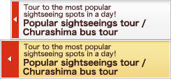 Popular sightseeings tour / Churashima bus tour