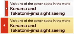 Kohama and Taketomi-jima sight seeing