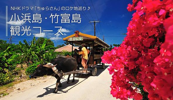 小浜島・竹富島観光コース