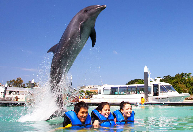 5 Recommended Hands-on Sightseeing Spots for Parents and Kids!