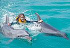 motobu_dolphinpremiumswim_sum