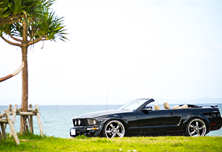 mustang-eleanor-black-menu
