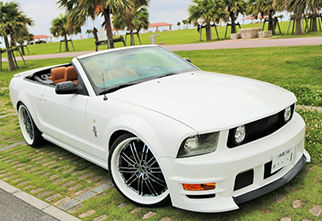 mustang-eleanor-white-menu