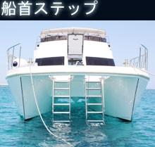 news_cruise08