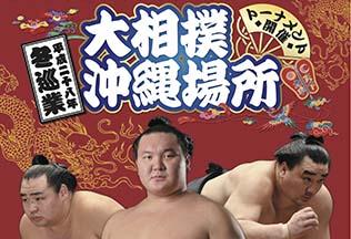 sumo-topsum