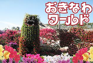 okinawa-world-hana-fes-topsum