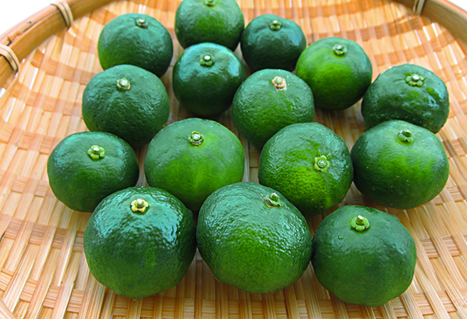 Shekwasha, The Green Jewel Full of Nutrition
