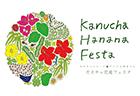 hanana-festa-sum