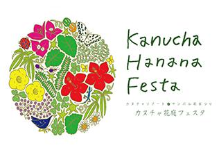 hanana-festa-topsum