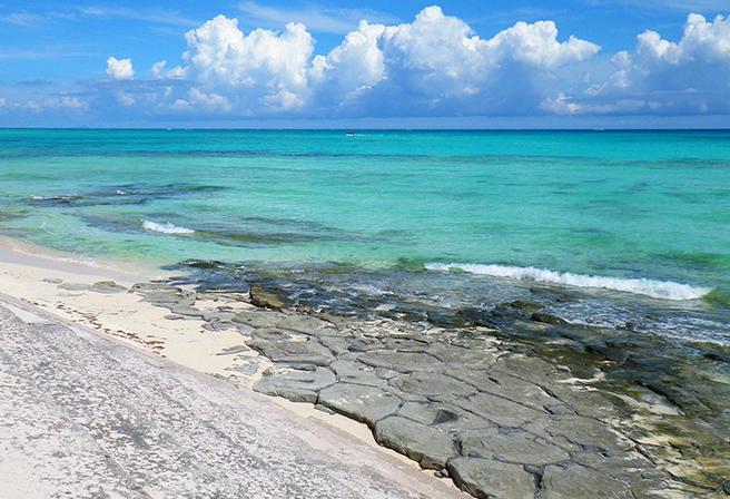 자연의 신비로움이 만든 '오지마 섬의 다다미이시'