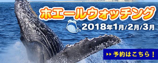 bn_whalewatching_2018_ja
