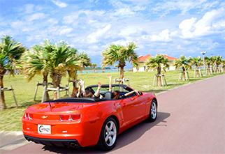 Car rental02