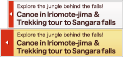Canoe in Iriomote-jima & Trekking tour to Sangara falls