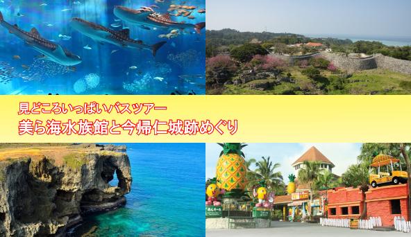 美ら海水族館と今帰仁城跡めぐり
