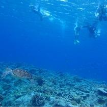 Snorkel_naha_sub3