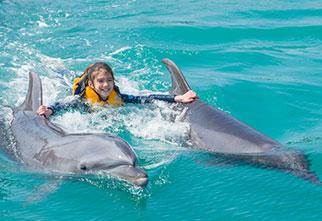 Dolphin premium swim : Motobu Genki Mura Village