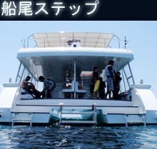 news_cruise10