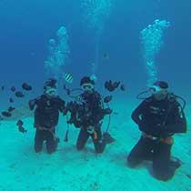 xtrip_diving_sub
